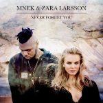 2. MNEK_Zara_Larsson_Never_Forget_You